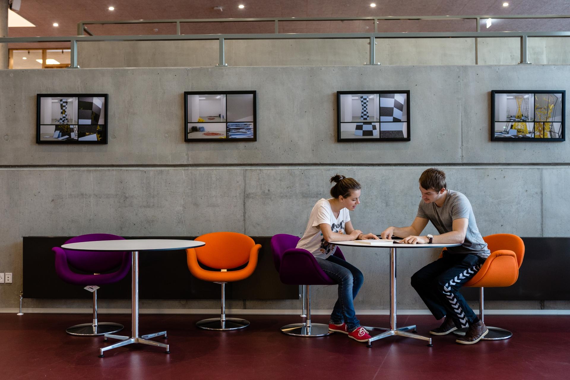 Programy na UCN v Dánsku